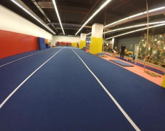 Galatasaray Cimnastik Okulu