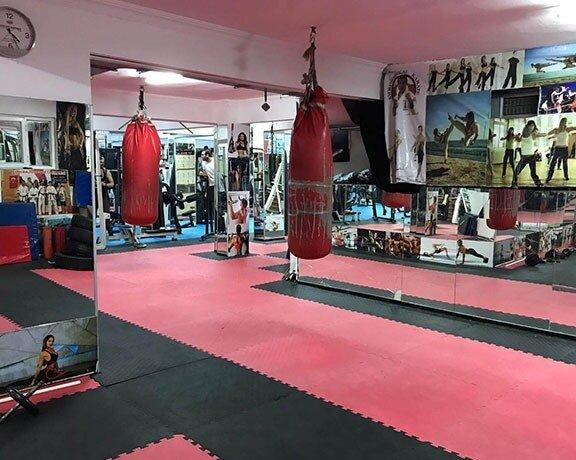 Şahin Spor Kulübü